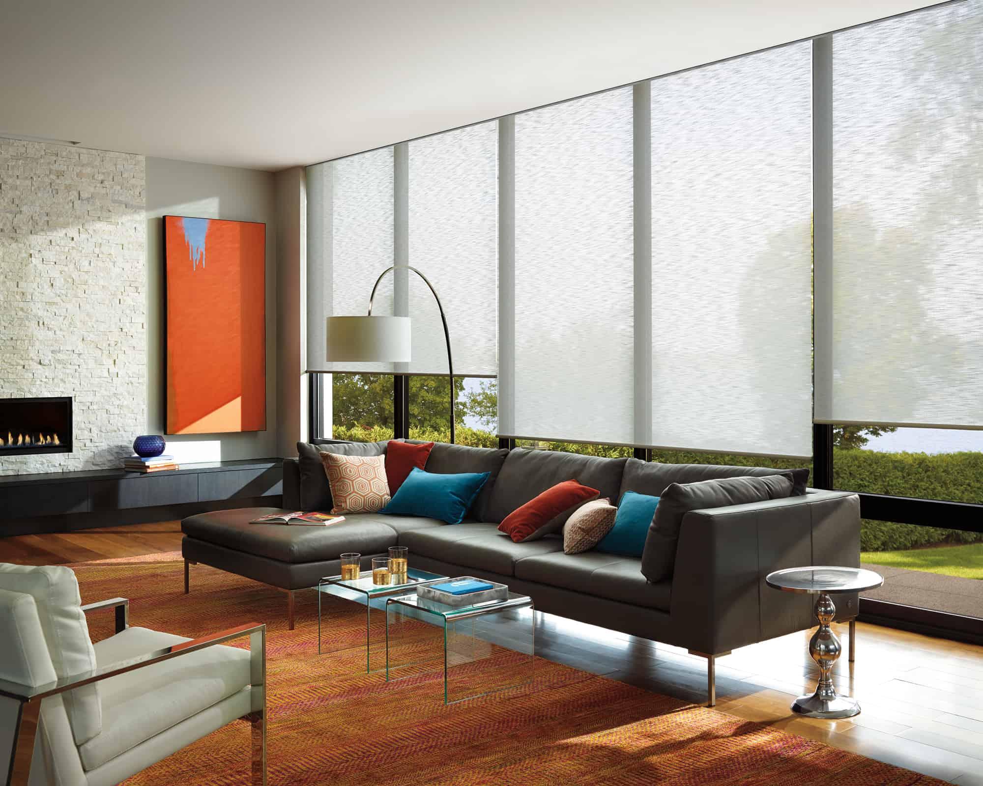 roller_shade_livingroom_1